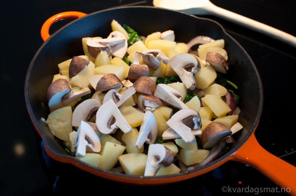 sopp poteter