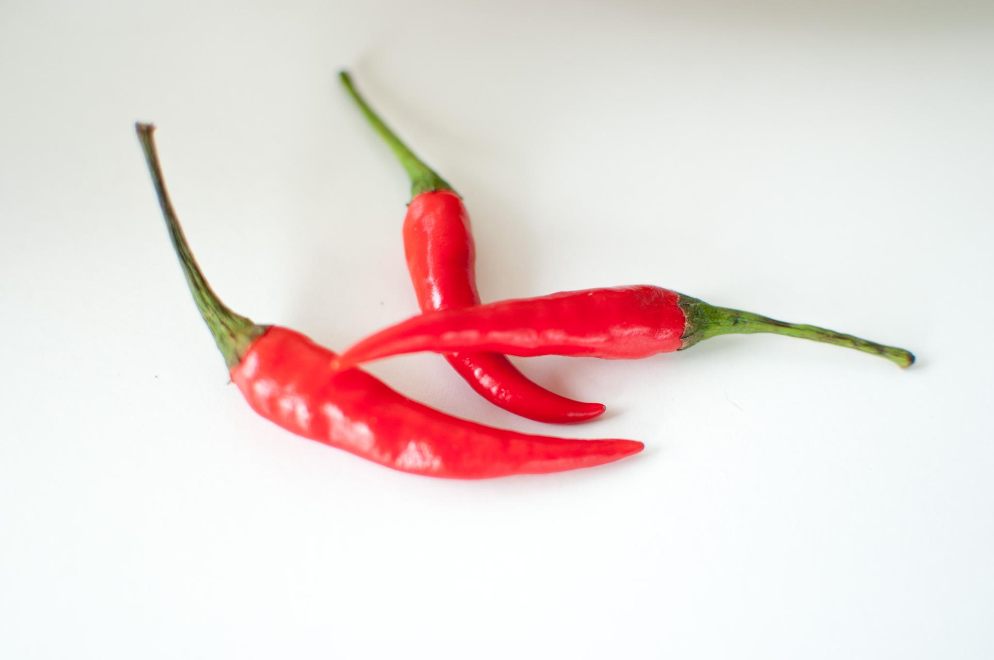 bird´s eye chili