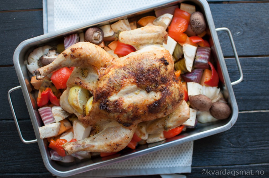 sitron kylling rotgrønsaker