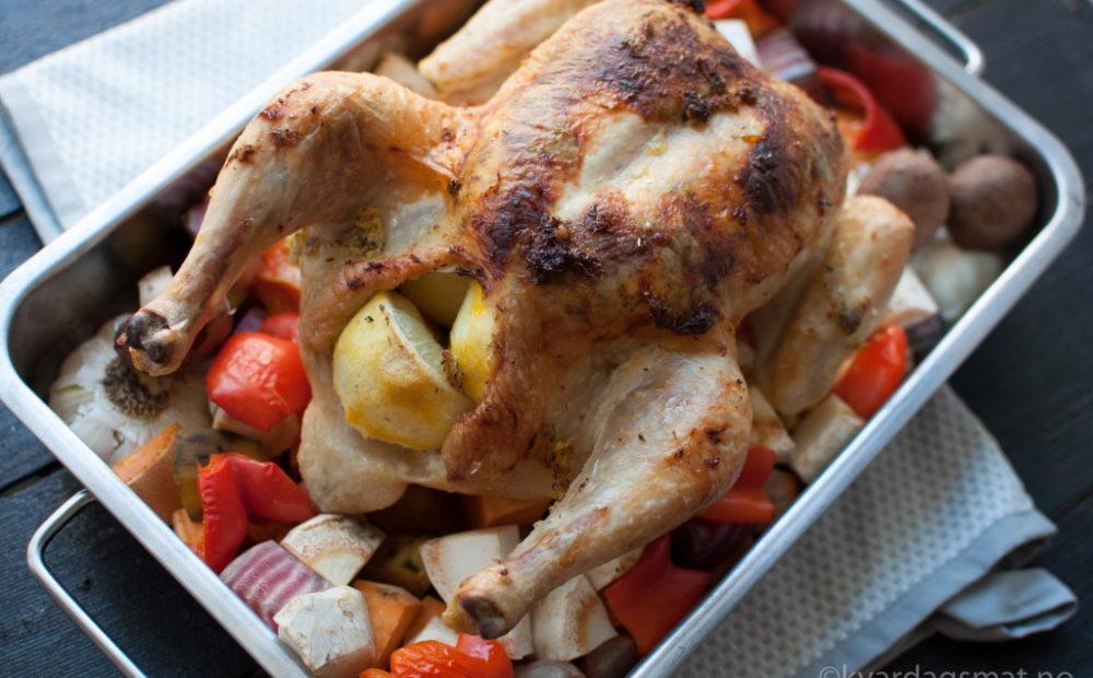 sitron kylling