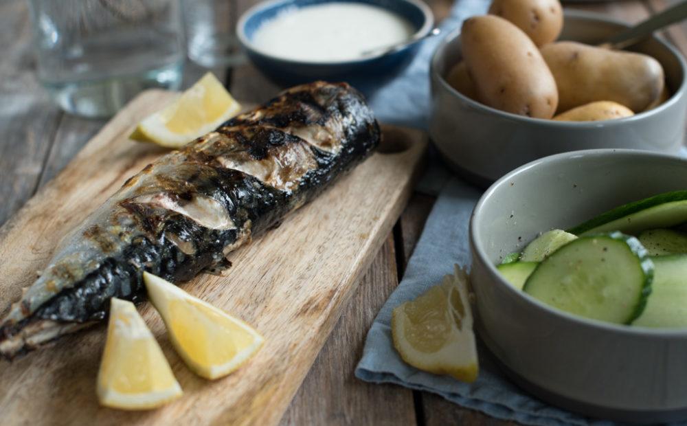 grilla makrell med agurksalat